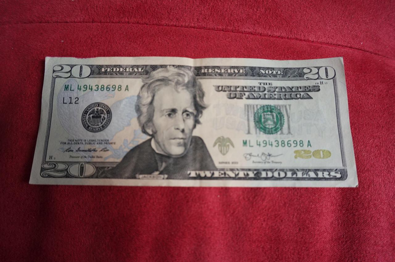Us dollar name12
